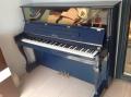 淄博專業鋼琴行