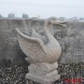 石雕噴水天鵝 黃銹石吐水天鵝 戶外石材水缽噴水池