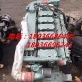 重汽336馬力WD615.69柴油機