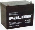 PALMA八馬蓄電池容量測試主要方法