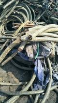 東營電纜線回收 高價高效