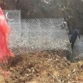 河道防汛鉛絲石籠網施工步驟