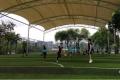 足球場5公分高環保草坪銷售熱線
