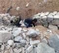 护坡格宾石笼 热镀锌格宾石笼 河道护坡格宾石笼