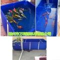 養蝦水池 廠家定做可移動養殖帆布水池