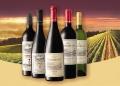 完湖回收白马红酒价格多少钱白马红酒值多少钱瓶