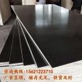 鄒平建筑木模板全楊整芯多次周轉廠家直銷