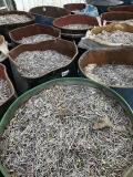 中山回收鎢鋼泥