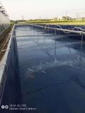 加厚耐磨帆布鱼池-耐拉无气味篷布水池加工定做