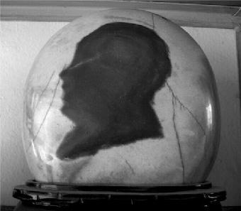 假图案动物类奇石图片