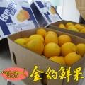 进口水果批发埃及夏橙瓦伦西亚供货商榨汁店货源