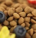 貓糧代工 美特斯加營養貓糧 營養均衡 貓糧OEM