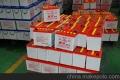 回收魔百盒cm201-2 cm201-1