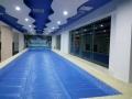 兒童泳池供應商游泳池批發供應無加盟費