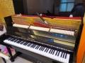 供應鋼琴樂器