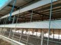 牛场卷帘布定做、养殖场卷帘布图片 卷帘布价格