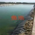 供应防水防渗土工膜 池塘鱼池防渗塑料膜 环保土工膜