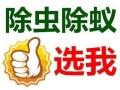 上海专业灭白蚂蚁公司 上海灭白蚁费用 上海跳蚤防治