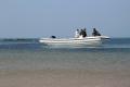 8.8米鋁合金釣魚艇快艇鋁合金釣魚船游艇