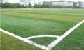 笼式足球场人工草皮