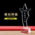 普城公司企業年會獎杯獎品五角星扭住獎杯年度成就獎杯