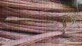广西贵港成轴电缆回收欢迎来电专业