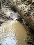 上海闵行区地下管道漏水检测专家,工厂漏水探测漏水点
