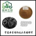 烏梅粉飲品原料批發酸梅濃縮汁烏梅濃縮粉水溶型