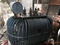 信陽明港電纜線回收聯系手機