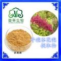 籽粒莧肽粉 籽粒莧生物活性肽粉 千穗谷多肽85
