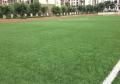 七人制足球场草坪安装