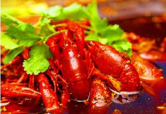 湖南长沙哪里可以学口味虾技术