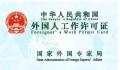 外國人來東莞辦理工作簽證所需條件