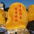 江西公園入口擺放大型黃蠟石刻字石網紅風景地標打卡石
