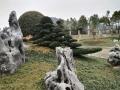 浙江金華白太湖石窟窿石園林景觀石庭院