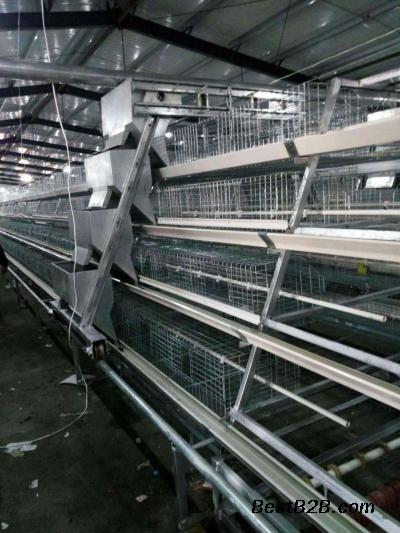 兴隆阶梯式育雏笼做工