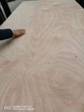 17mm桃花芯多層板膠合板托盤板包裝箱板