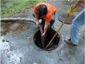 新區清理隔油池公司一站式服務