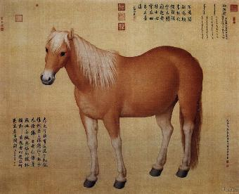 36种动物字画解答