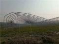 溫室大棚專用橢圓管建設優勢