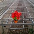 新型移动苗床养花育苗超值
