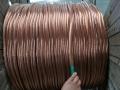 天津TJ-120裸銅絞線