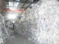 杨浦区专业废纸销毁最高赔率公司杨浦区废旧报纸意彩app回收基地