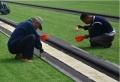 足球場7人制PE草皮一平米多少錢