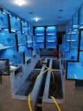 广州海鲜鱼池厂,广州海鲜鱼池厂家,广州海鲜鱼池最高赔率公司