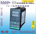 TE-T16KV智能温控表K型热电偶