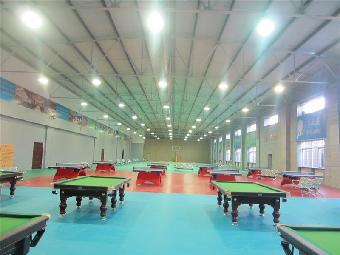 乒乓球室尺寸 乒乓球室内地胶报价 乒乓球室地胶价格图片
