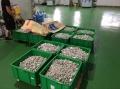 南寧回收有鉛錫塊,九江無鉛錫線回收