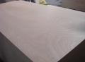 3mm-30mm楊木多層家具板實木實木家具板包裝板