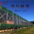 東莞沙田農田西瓜棚 蔬菜活動大蓬 折疊伸縮推拉篷